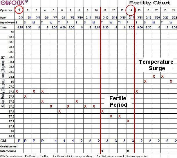 graphic regarding Basal Body Temperature Chart Printable called Fertility Charting